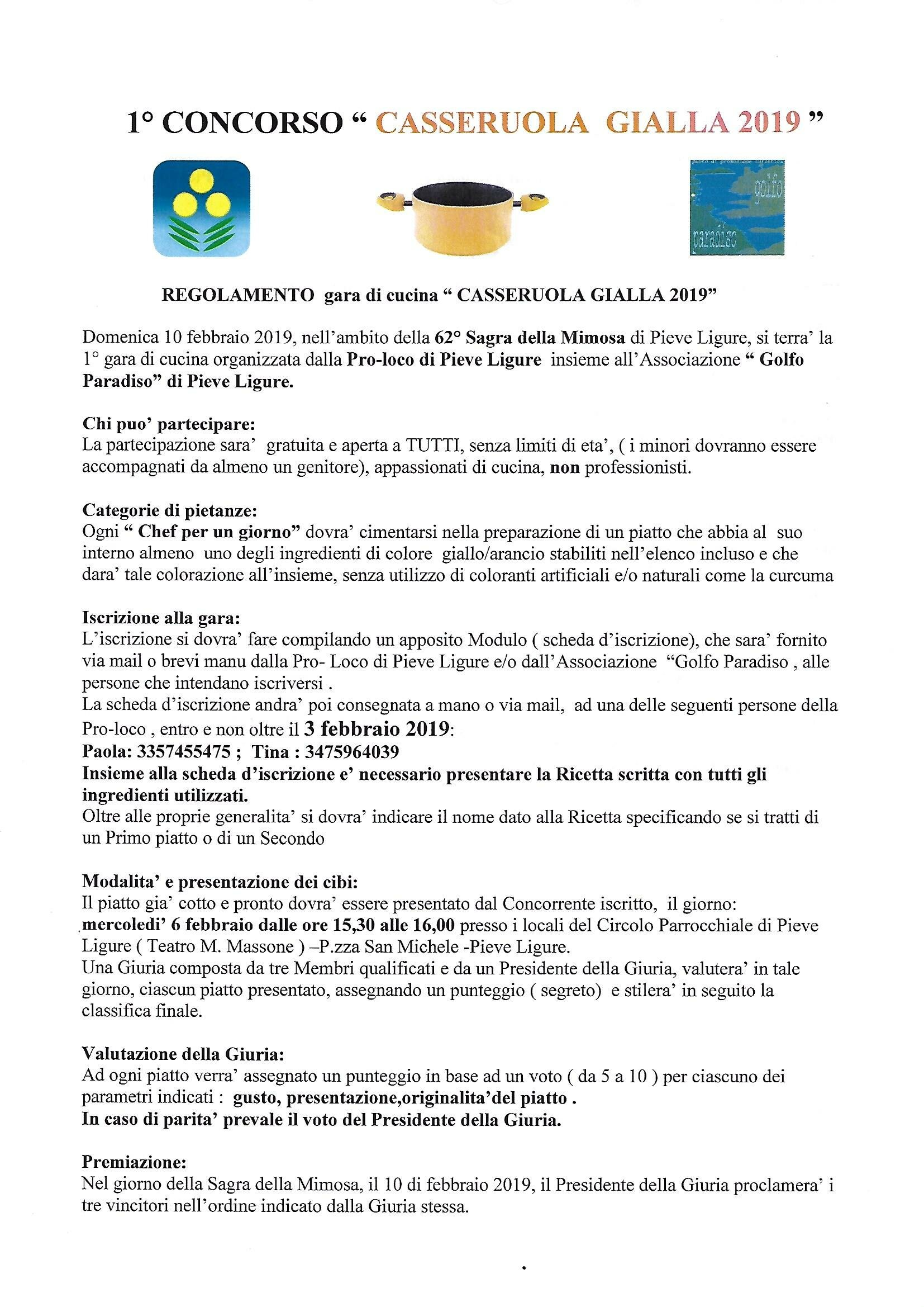 Regolamento Casseruola gialla 2019- pag.1